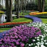 jardin-issu-du-livres-jardins-de-jardiniers-2_5461886