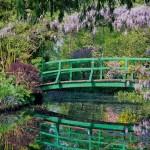 jardin-issu-du-livres-jardins-de-jardiniers-3_5461888