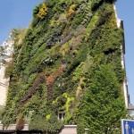 jardin-issu-du-livres-jardins-de-jardiniers-4_5461890