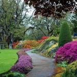 jardin-issu-du-livres-jardins-de-jardiniers-8_5461898