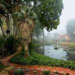 jardin-issu-du-livres-jardins-de-jardiniers-9_5461900