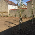 amenagement jardin mantes la jolie