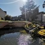 creation bassin Rosny-sur-Seine